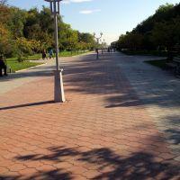 бульвар Мира в г. Невинномысск, Невинномысск