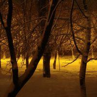 ул. Дзержинского зимой, Ставрополь