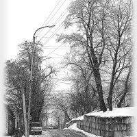 """Yasenovskaya"" a street per the first day of spring., Ставрополь"