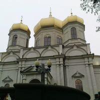 Казанский кафедральный собор Ставрополя во время богослужения Святейшего Патриарха Кирилла, Ставрополь