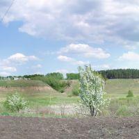 Весна, Гавриловка Вторая