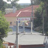 г. Жердевка КОПЕЙКА на ул. Советская (август 2009 г.), Жердевка