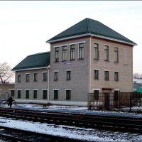 Жердевка административ. здание ж/д, Жердевка
