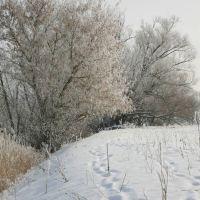 И всё-таки зима пришла :), Знаменка