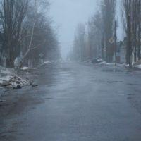 Туманная весна, Кирсанов