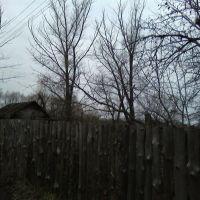 Сады на Лесной Опушке, Котовск