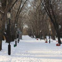 парк, Котовск