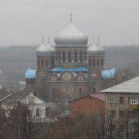 Боголюбский кафедральный собор, Мичуринск