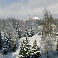 Зимний Мичуринск, Мичуринск