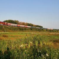 Поезд Волгоград - Москва пересекает пойму реки Битюг в окрестностях с Мордово, ст. Оборона, Мордово
