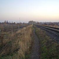 (2008), Моршанск