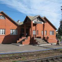 IZBERDEY railway station, (Petrovskoe). Вокзал станции Избердей. Петровское., Петровское