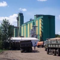 Izverdey Grain Elevator, Петровское