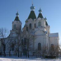 Церковь Троицы Живоначальной, Пичаево