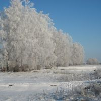 Зимняя дорога, Пичаево