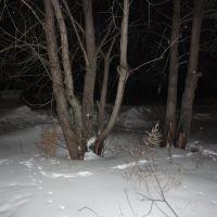 Ночное Пичаево, Пичаево