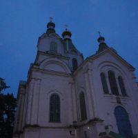 Свято- Троицкая церковь в селе Пичаево, Пичаево