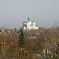 Село Пичаево. Церковь Троицы Живоначальной, Пичаево