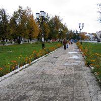 Сквер на пл.Ленина осенью, Рассказово