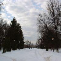 Сквер на пл.Ленина зимой, Рассказово