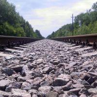 Железная дорога (фото 2), Ржакса