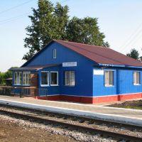 STAROYURIEVO, railway station., Староюрьево