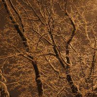 Немного зимнего волшебства напоследок, Тамбов