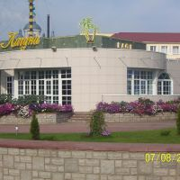 "кафе ""Лагуна"". 07-08-2004, Тамбов"