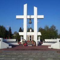 Памятник героям Великой Отечественной Войны., Токаревка
