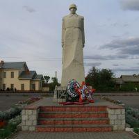 памятник у вокзала, Токаревка