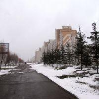 22 апреля 2009гApril, Апастово