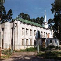 мечеть в Васильево / mosque in the Vasilyevo, Апастово