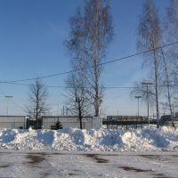 памятник Ленину перед школой №1, Базарные Матаки