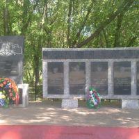 """Памятник """"Авганцам"""", Богатые Сабы"""