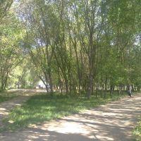 Парк, Богатые Сабы