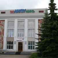 ТатНИПИ, Бугульма