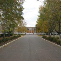 Аллея Школы №3, Бугульма
