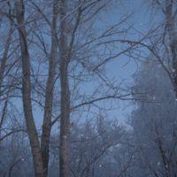 Зимний парк, Бугульма