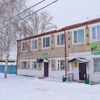 библиотека, Буинск