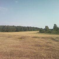 Маленькие холмики, Васильево