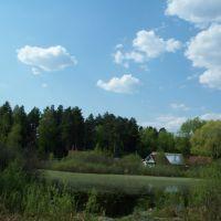 Пейзаж//Landscape, Васильево