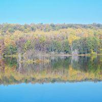 Зеркальный пейзаж//Landscape Mirror, Васильево
