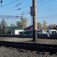 Васильевская железка//Vasilyevo`s railroad, Васильево