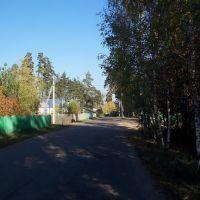 Дорога ведущая к остановке//The road leading to a halt, Васильево