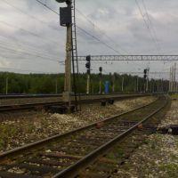 Ж/Д на 774 км///railway to 774 km, Васильево