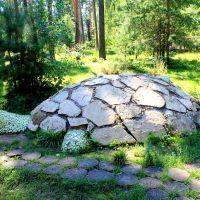 Каменная черепаха, Васильево