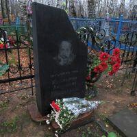 Могила художника Константина Васильева ( http://ru.wikipedia.org/wiki/Константин_Васильев ), Васильево
