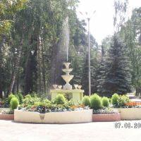 Фонтан на входе, Васильево