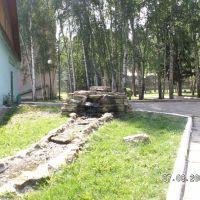 Каменный родник, Васильево