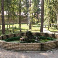 Фонтан из камней, Васильево